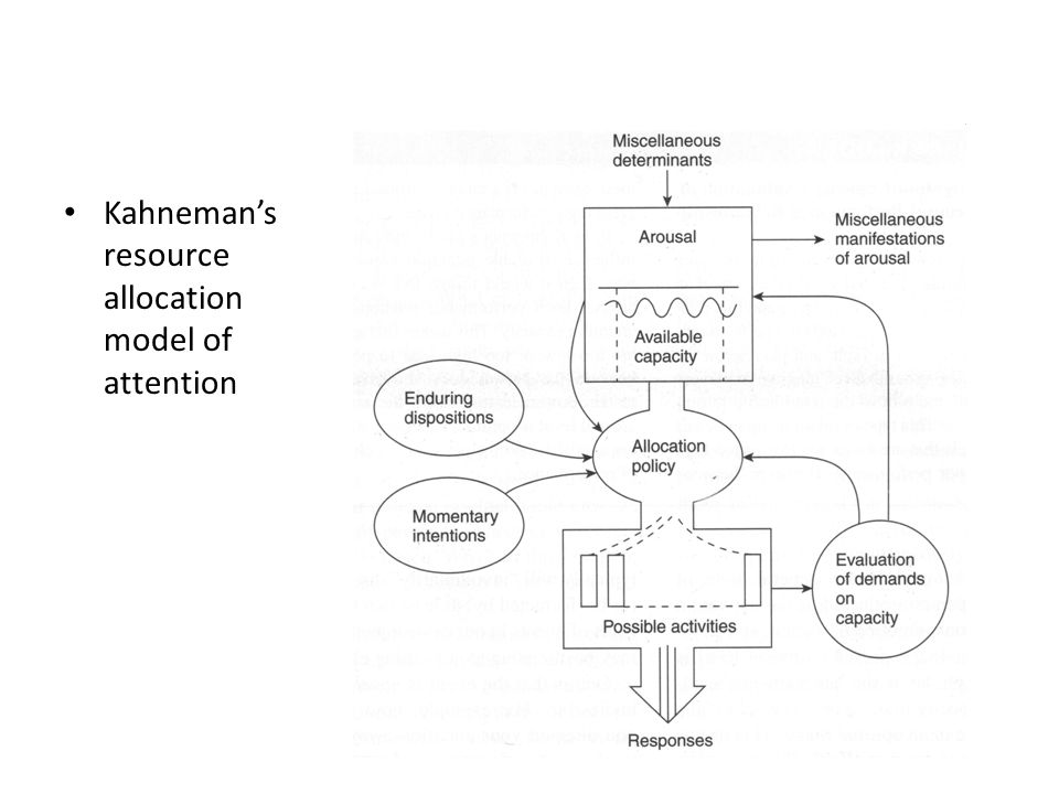 Kahneman's resource allocation model of attention