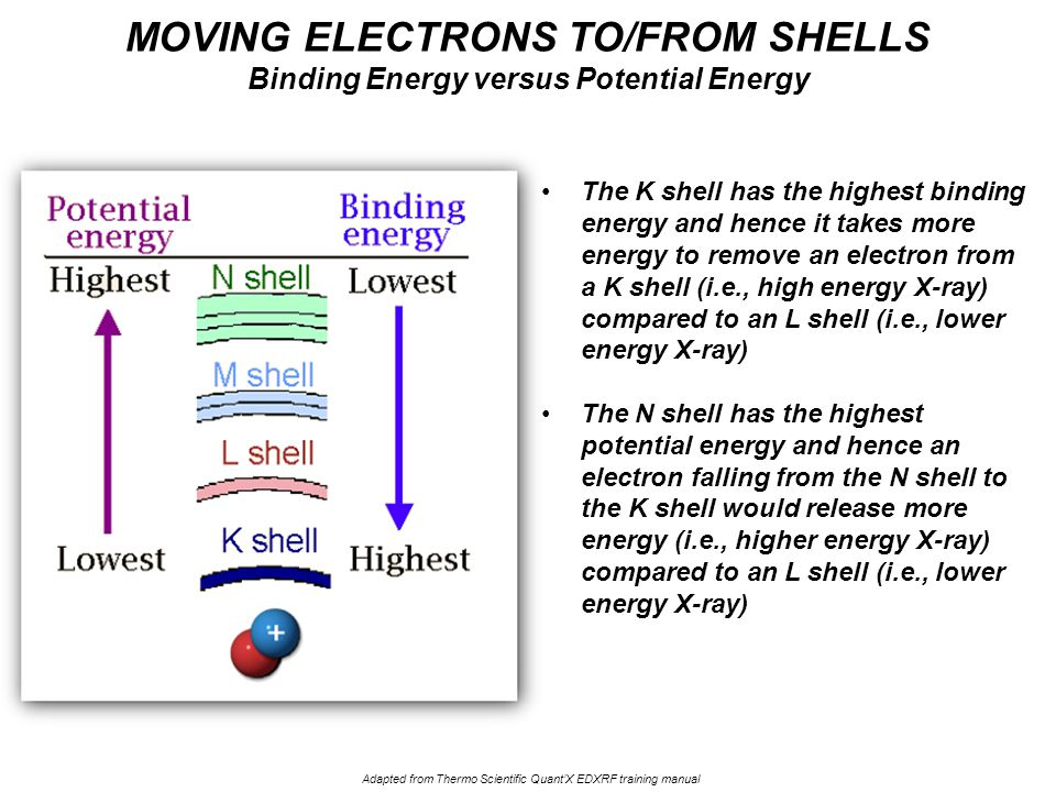 The K shell has the highest binding energy and hence it takes more energy to remove an electron from a K shell (i.e., high energy X-ray) compared to an L shell (i.e., lower energy X-ray) The N shell has the highest potential energy and hence an electron falling from the N shell to the K shell would release more energy (i.e., higher energy X-ray) compared to an L shell (i.e., lower energy X-ray) MOVING ELECTRONS TO/FROM SHELLS Binding Energy versus Potential Energy Adapted from Thermo Scientific Quant'X EDXRF training manual