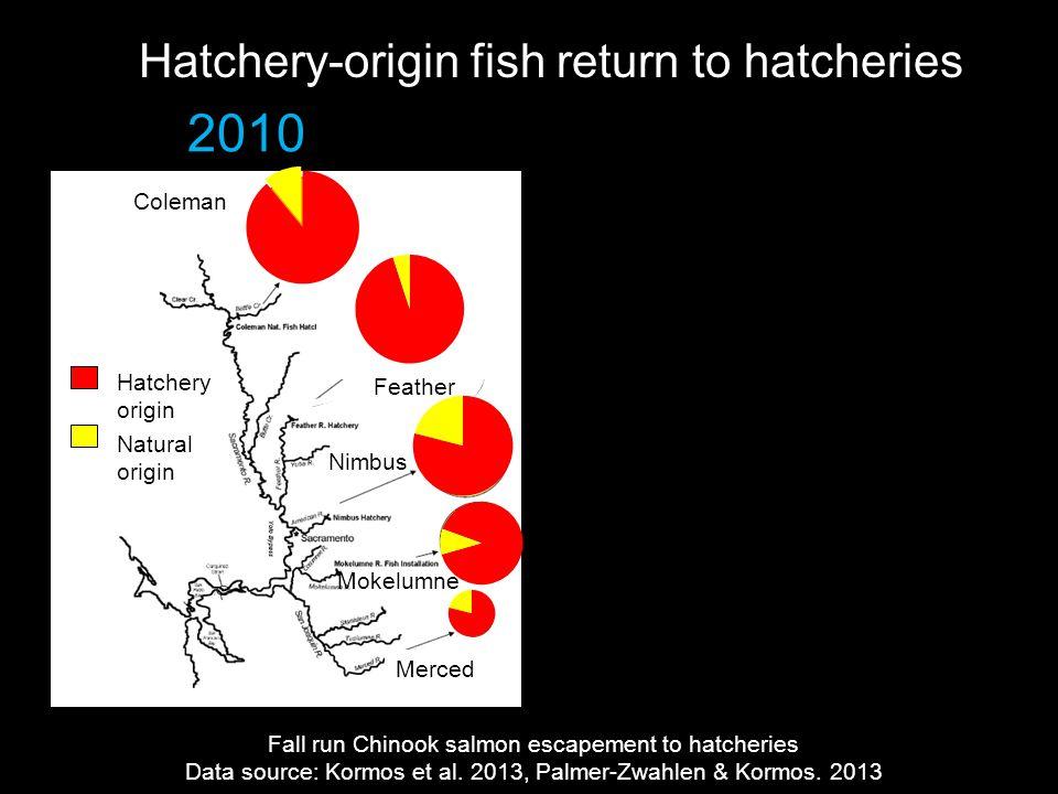 Hatchery-origin fish return to hatcheries 2010 Fall run Chinook salmon escapement to hatcheries Data source: Kormos et al.