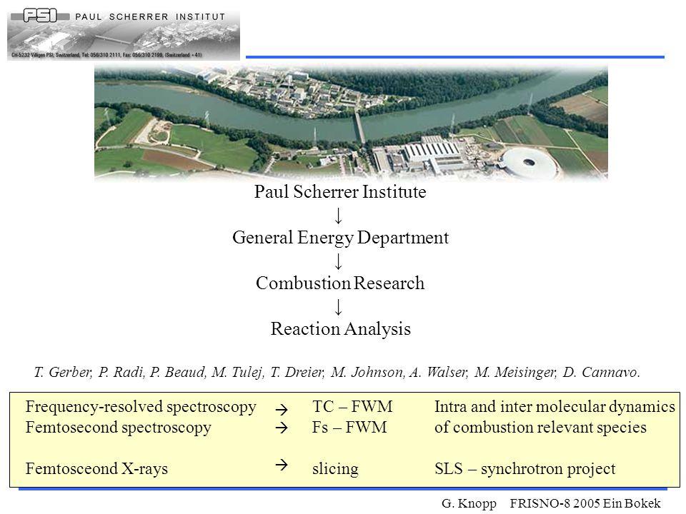 G. Knopp FRISNO-8 2005 Ein Bokek Paul Scherrer Institute ↓ General Energy Department ↓ Combustion Research ↓ Reaction Analysis T. Gerber, P. Radi, P.