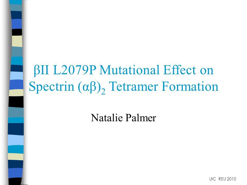 βII L2079P Mutational Effect on Spectrin (αβ) 2 Tetramer Formation Natalie Palmer UIC REU 2010