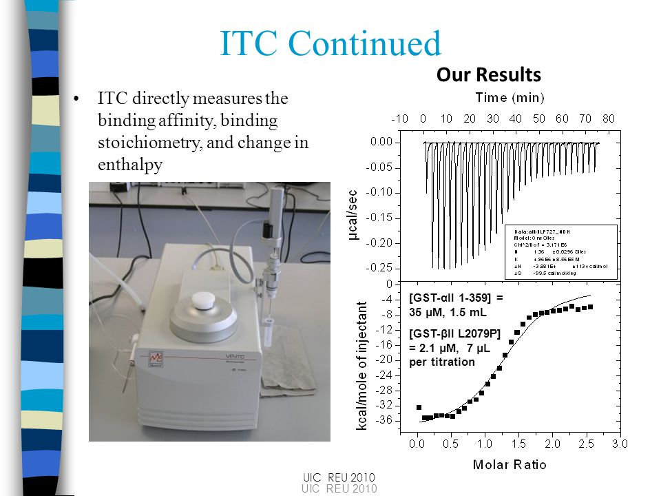 ITC Continued ITC directly measures the binding affinity, binding stoichiometry, and change in enthalpy UIC REU 2010 Our Results [GST-αII 1-359] = 35 μM, 1.5 mL [GST-βII L2079P] = 2.1 μM, 7 μL per titration UIC REU 2010