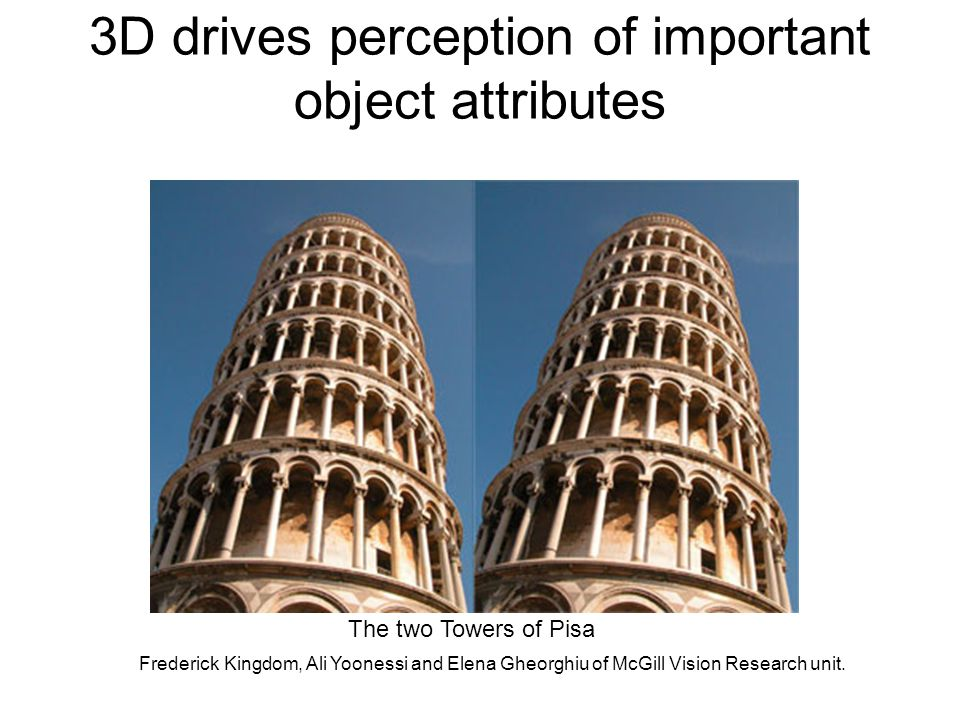 3D drives perception of important object attributes Frederick Kingdom, Ali Yoonessi and Elena Gheorghiu of McGill Vision Research unit.