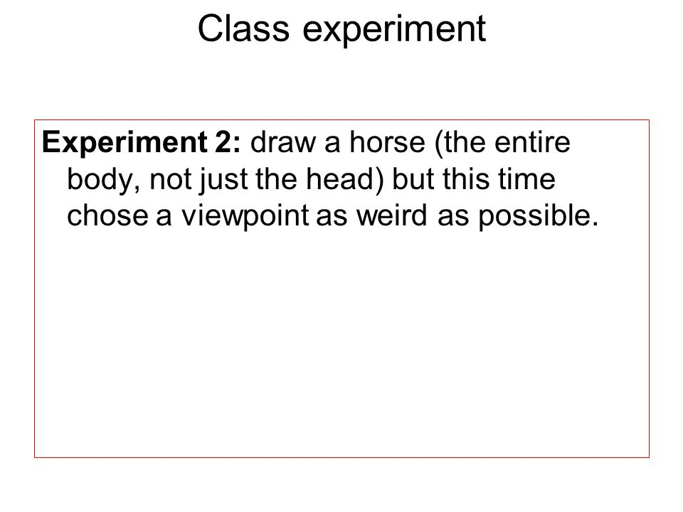 Class experiment Experiment 2: draw a horse (the entire body, not just the head) but this time chose a viewpoint as weird as possible.