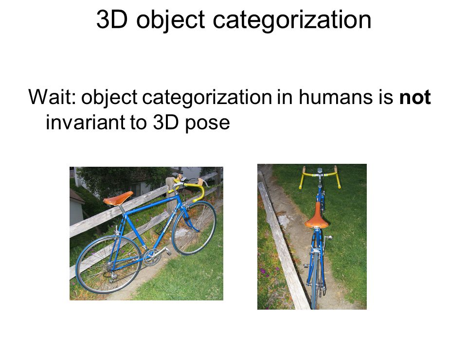 3D object categorization Wait: object categorization in humans is not invariant to 3D pose
