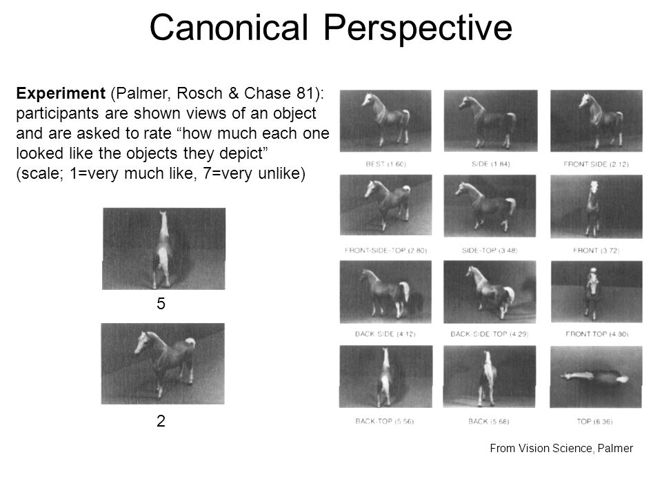 Canonical Perspective From Vision Science, Palmer Experiment (Palmer, Rosch & Chase 81): participants are shown views of an object and are asked to rate how much each one looked like the objects they depict (scale; 1=very much like, 7=very unlike) 5 2