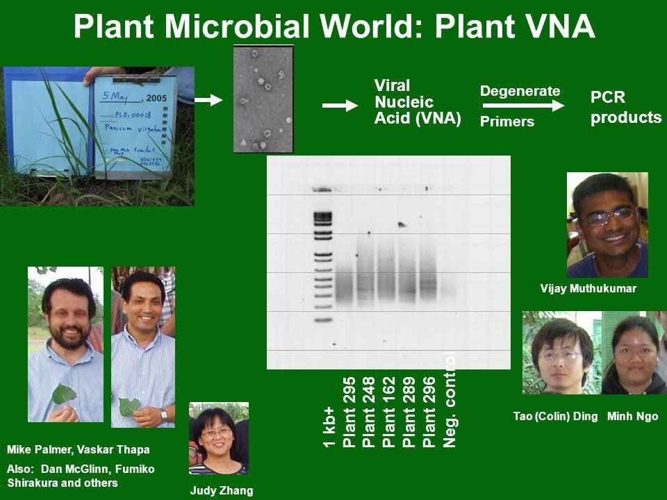Plant Microbial World: Plant VNA Mike Palmer, Vaskar Thapa Also: Dan McGlinn, Fumiko Shirakura and others Judy Zhang Viral Nucleic Acid (VNA) Degenera