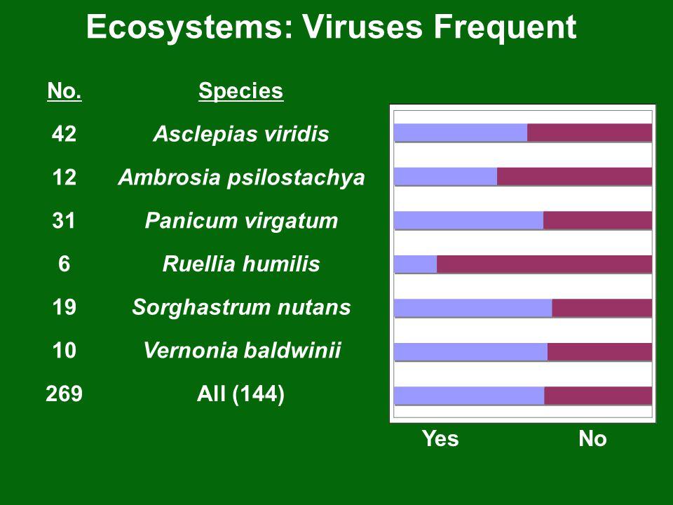 Ecosystems: Viruses Frequent No.Species 42Asclepias viridis 12Ambrosia psilostachya 31Panicum virgatum 6Ruellia humilis 19Sorghastrum nutans 10Vernoni