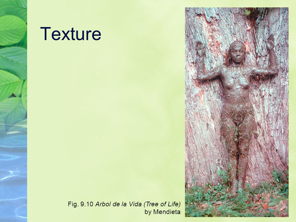 Texture Fig. 9.10 Arbol de la Vida (Tree of Life) by Mendieta
