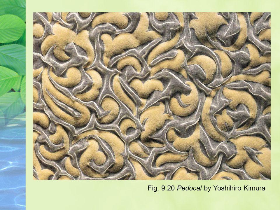 Fig. 9.20 Pedocal by Yoshihiro Kimura