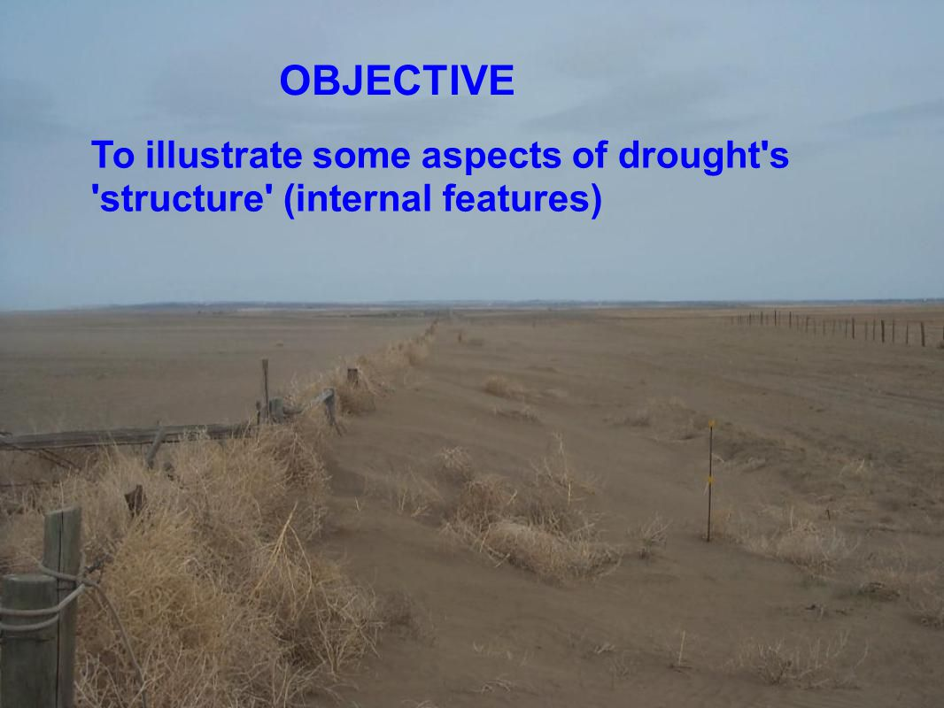 To illustrate some aspects of drought s structure (internal features) OBJECTIVE