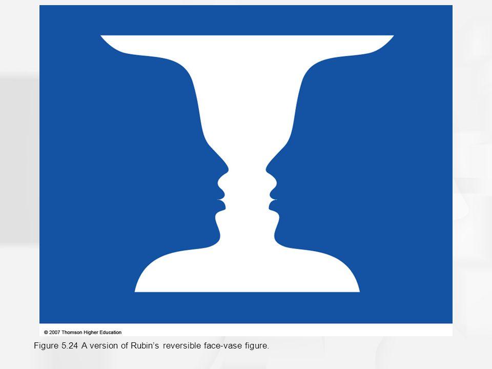 Figure 5.24 A version of Rubin's reversible face-vase figure.