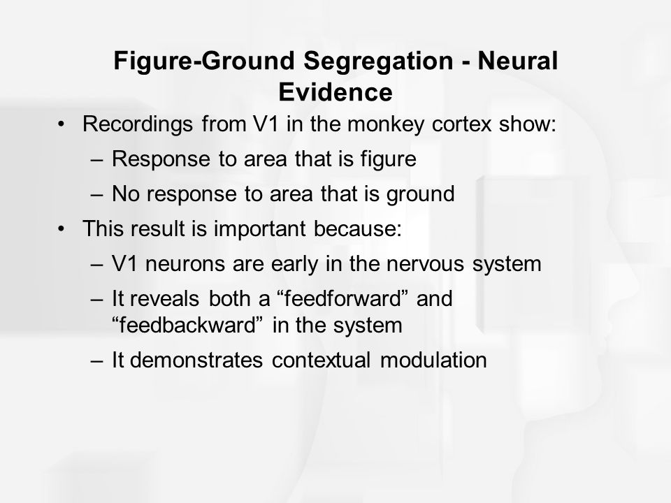 Figure-Ground Segregation - Neural Evidence Recordings from V1 in the monkey cortex show: –Response to area that is figure –No response to area that i