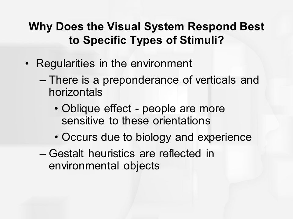 Why Does the Visual System Respond Best to Specific Types of Stimuli? Regularities in the environment –There is a preponderance of verticals and horiz