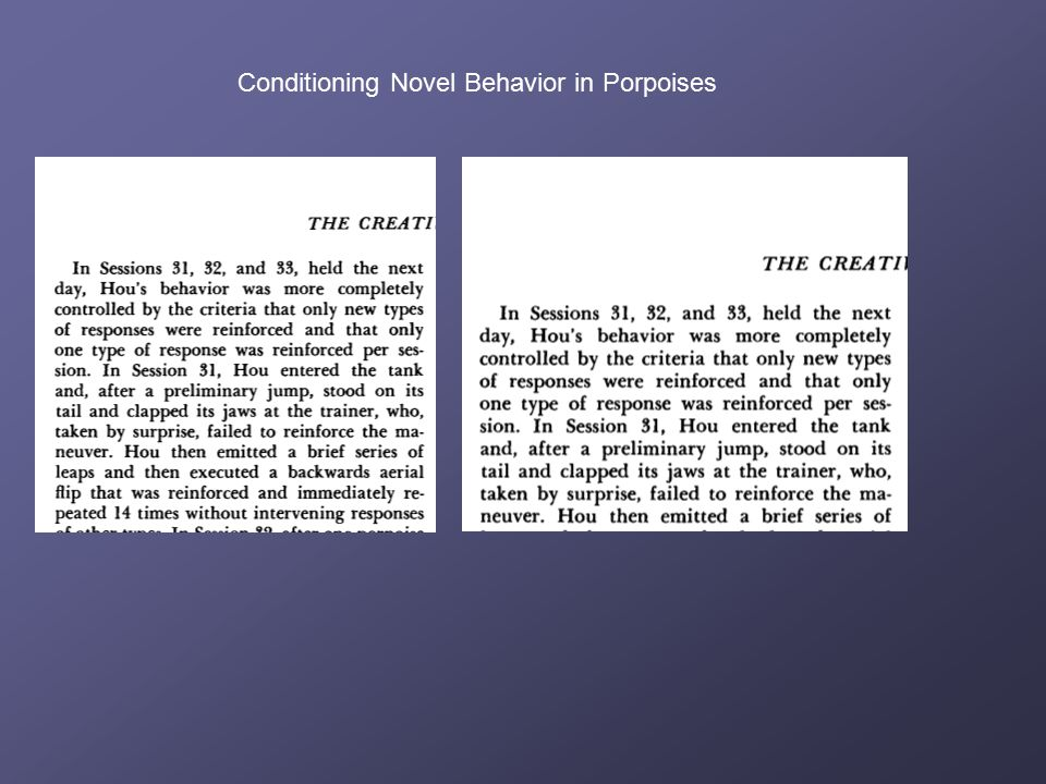 Chapter 19: Thinking  Thinking:  Is behavior.