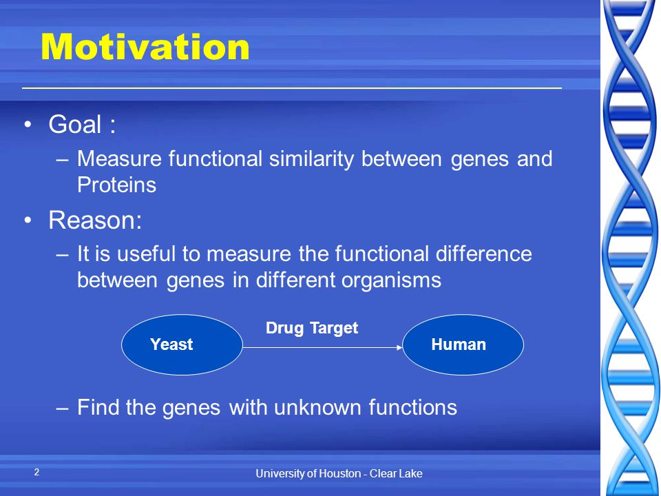University of Houston - Clear Lake 2 Motivation Goal : –Measure functional similarity between genes and Proteins Reason: –It is useful to measure the functional difference between genes in different organisms –Find the genes with unknown functions HumanYeast Drug Target