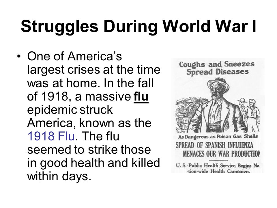 Struggles During World War I One of America's largest crises at the time was at home. In the fall of 1918, a massive flu epidemic struck America, know