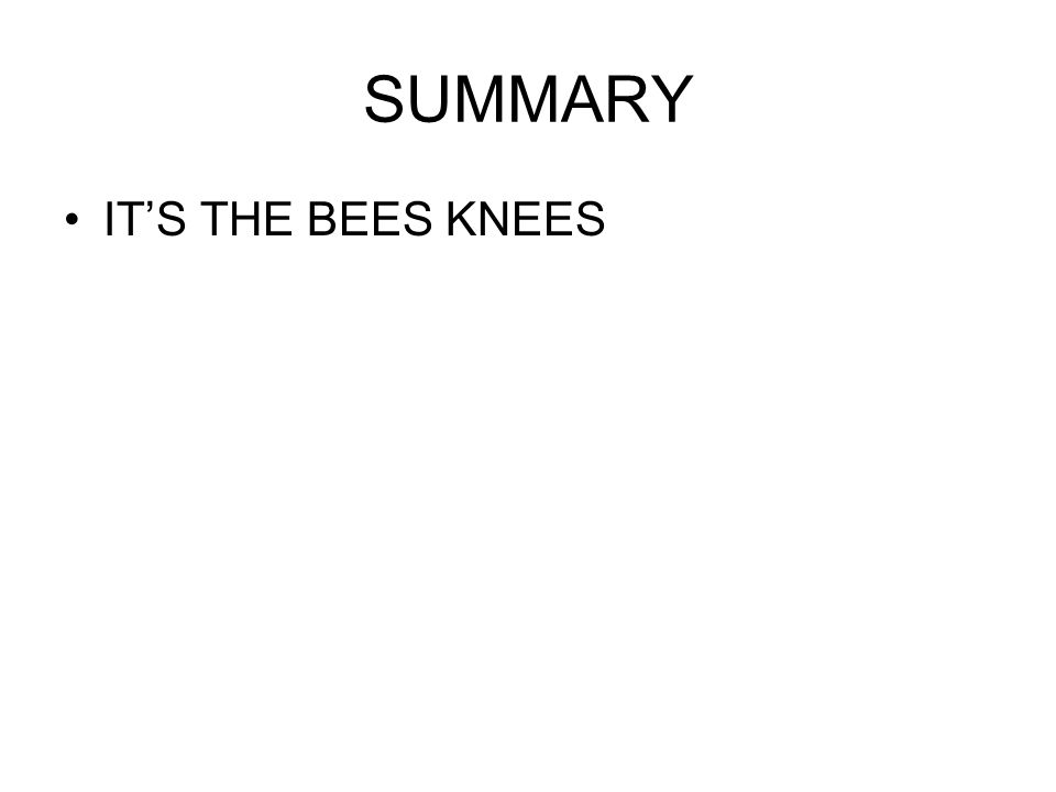 SUMMARY IT'S THE BEES KNEES