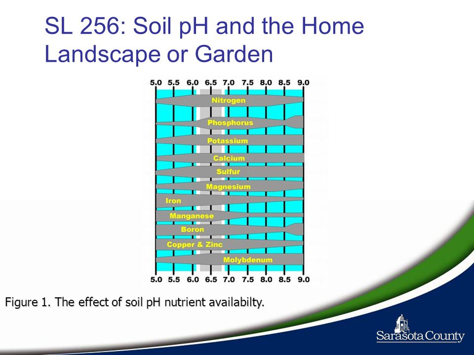 SL 256: Soil pH and the Home Landscape or Garden Figure 1. The effect of soil pH nutrient availabilty.