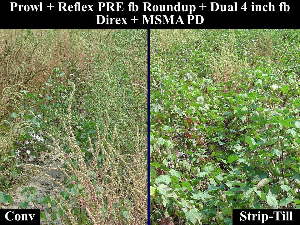 Prowl + Reflex PRE fb Roundup + Dual 4 inch fb Direx + MSMA PD ConvStrip-Till