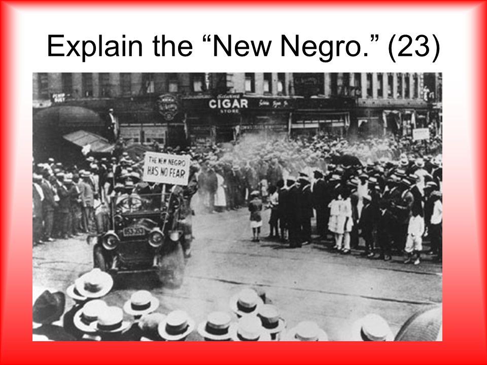 """Explain the """"New Negro."""" (23)"""