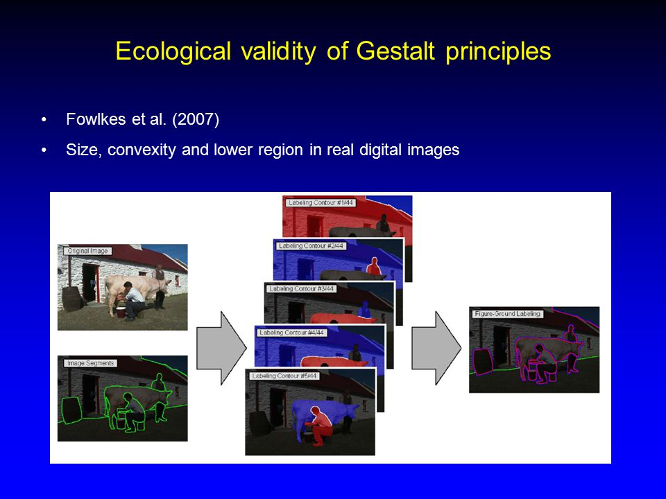 Ecological validity of Gestalt principles Fowlkes et al. (2007) Size, convexity and lower region in real digital images