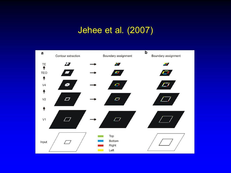 Jehee et al. (2007)