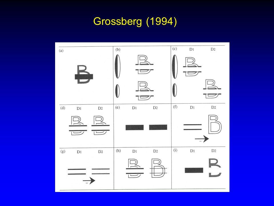 Grossberg (1994)