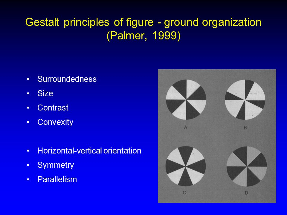 Gestalt principles of figure - ground organization (Palmer, 1999) Surroundedness Size Contrast Convexity Horizontal-vertical orientation Symmetry Para