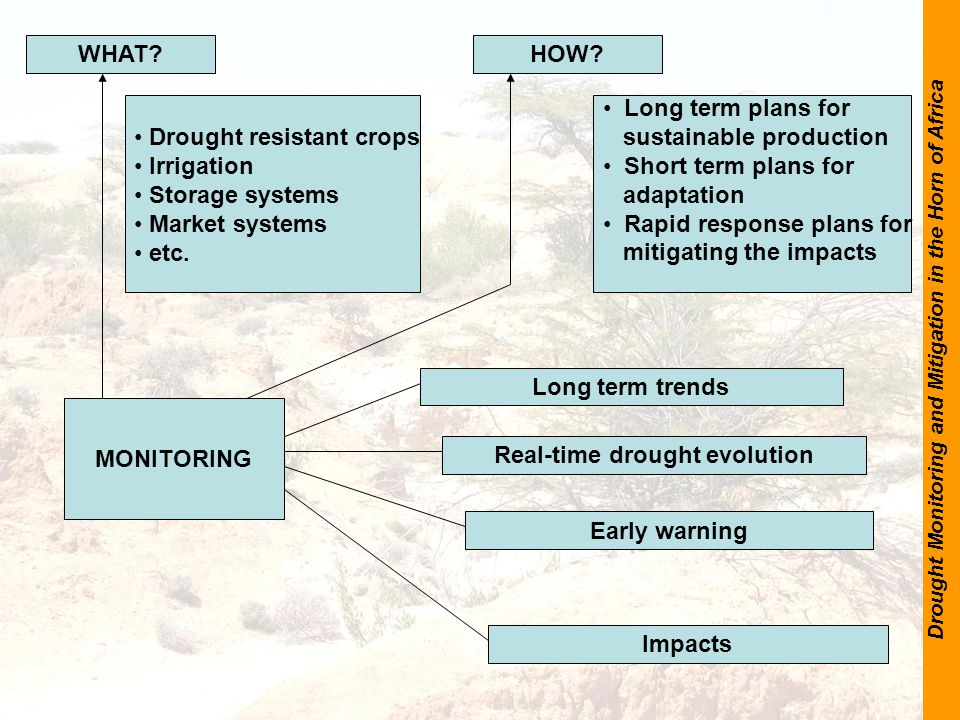 Drought Monitoring and Mitigation in the Horn of Africa WHAT HOW.