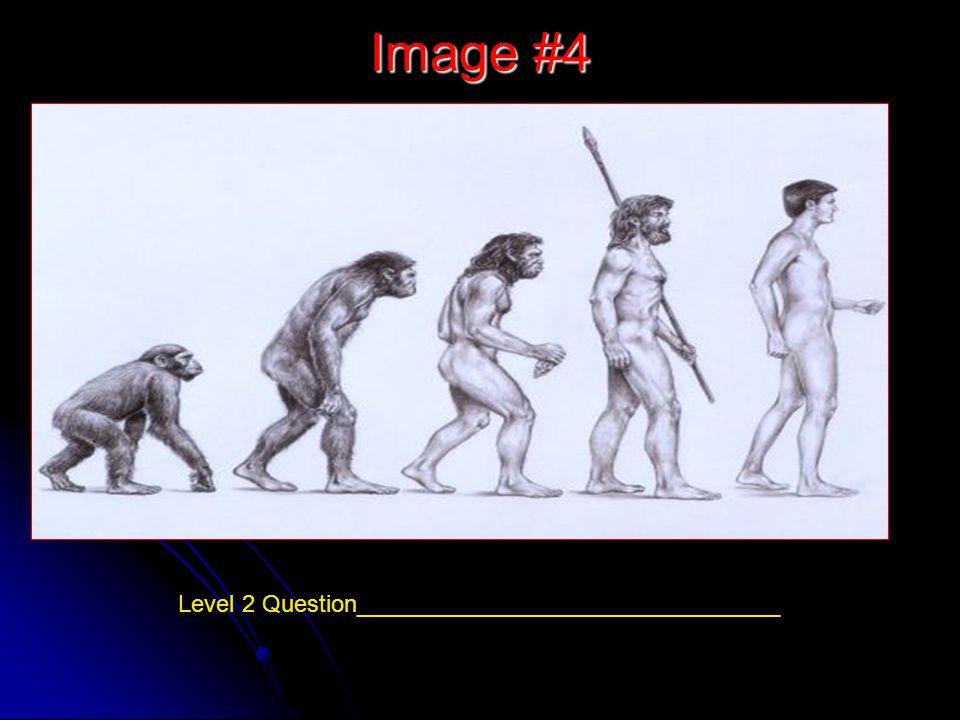 Image #4 Level 2 Question________________________________