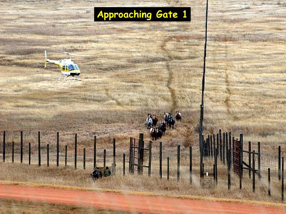 Approaching Gate 1