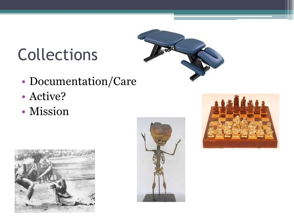 Collections Documentation/Care Active? Mission