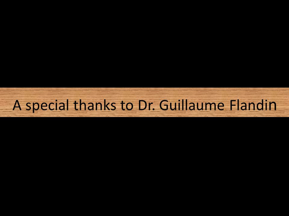 A special thanks to Dr. Guillaume Flandi n