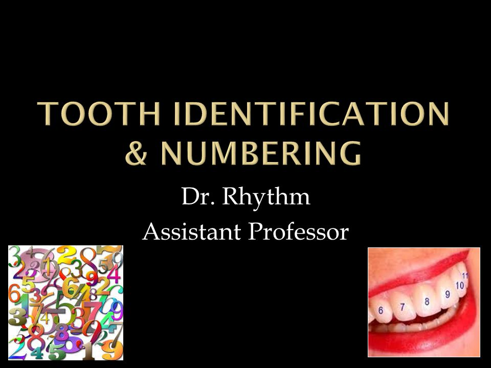 Dr. Rhythm Assistant Professor