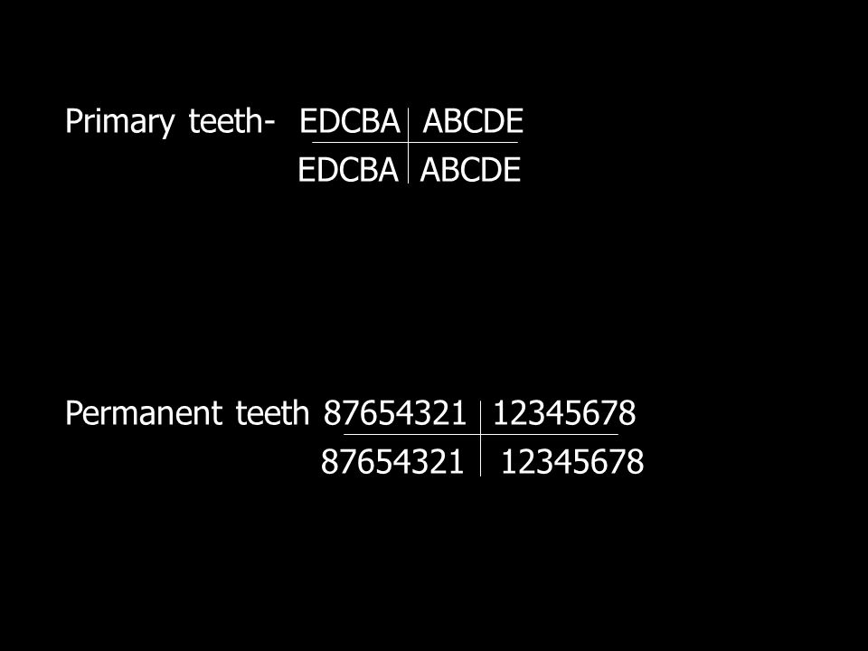 Primary teeth- EDCBA ABCDE EDCBA ABCDE Permanent teeth 87654321 12345678 87654321 12345678