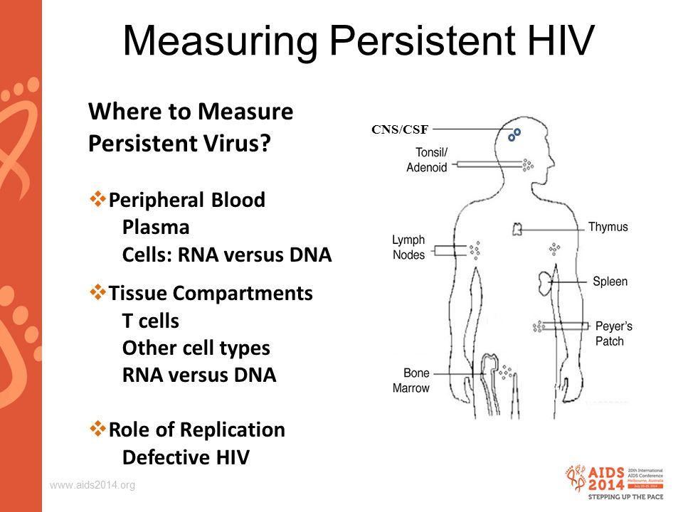 www.aids2014.org Measuring Persistent HIV Where to Measure Persistent Virus?  Peripheral Blood Plasma Cells: RNA versus DNA  Tissue Compartments T c
