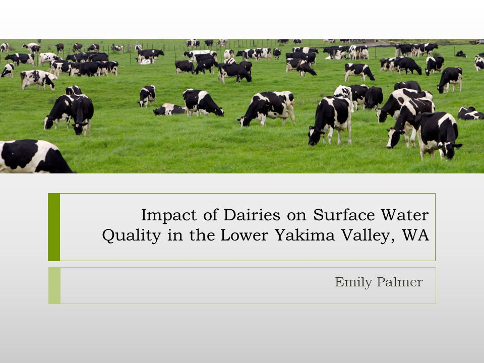 Impact of Dairies on Surface Water Quality in the Lower Yakima Valley, WA Emily Palmer