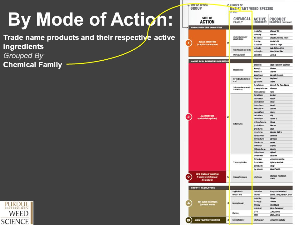 By Mode of Action: Trade name products and their respective active ingredients Grouped By Chemical Family
