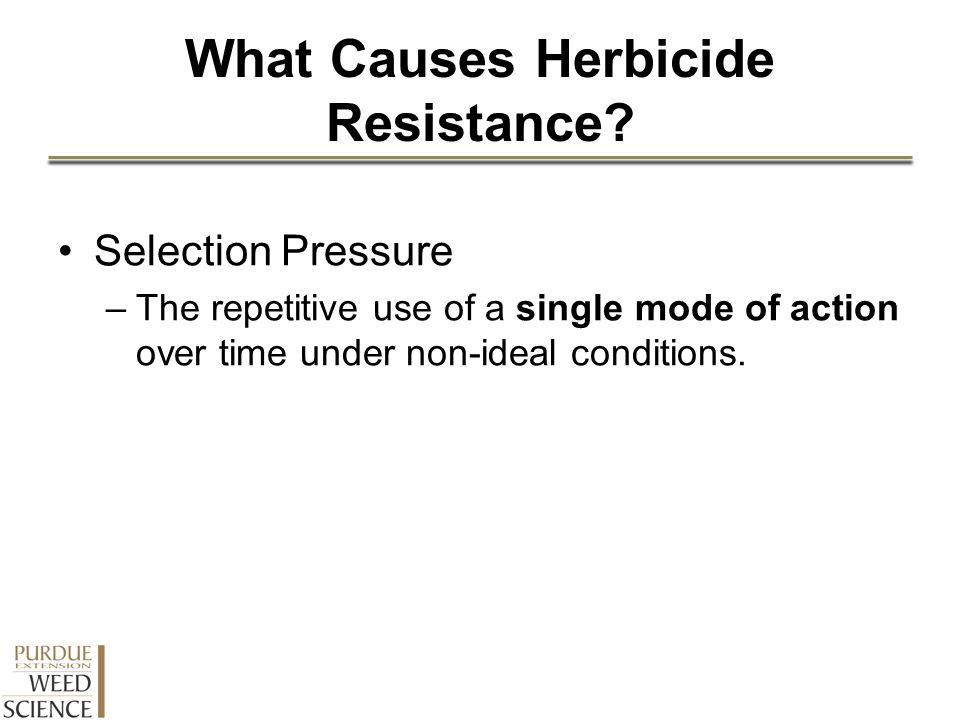 What Causes Herbicide Resistance? Selection Pressure –The repetitive use of a single mode of action over time under non-ideal conditions.