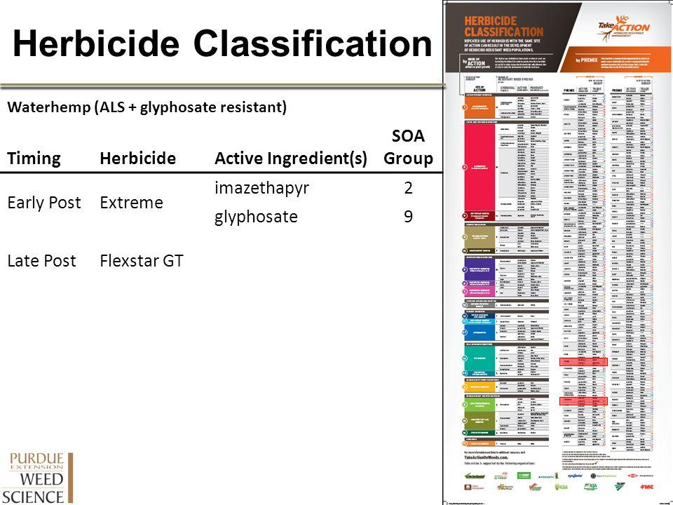 Herbicide Classification Waterhemp (ALS + glyphosate resistant) TimingHerbicideActive Ingredient(s) SOA Group Early PostExtreme imazethapyr2 glyphosat