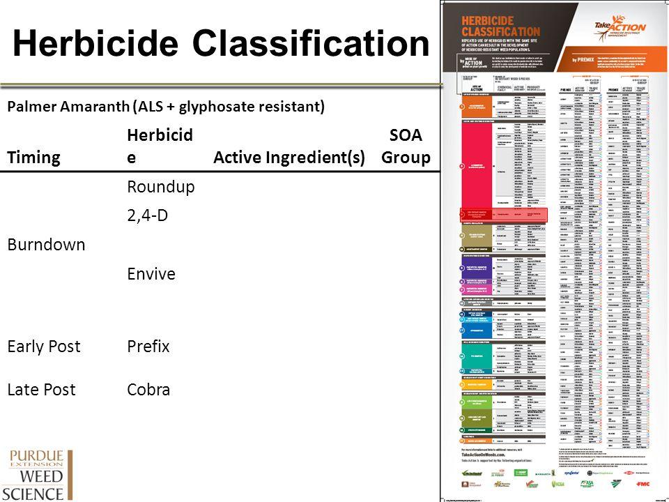 Herbicide Classification Palmer Amaranth (ALS + glyphosate resistant) Timing Herbicid eActive Ingredient(s) SOA Group Burndown Roundup 2,4-D Envive Ea