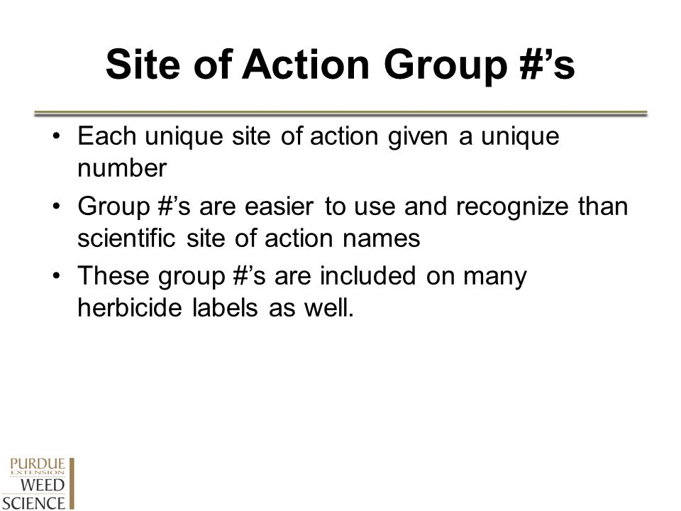 Site of Action Group #'s Each unique site of action given a unique number Group #'s are easier to use and recognize than scientific site of action nam