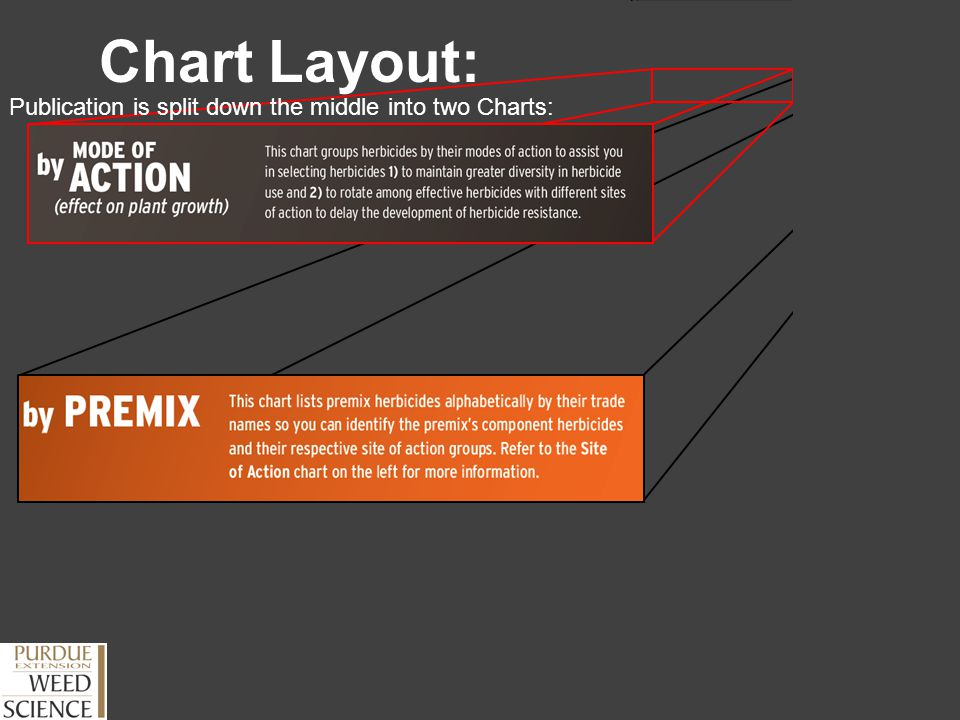 Publication is split down the middle into two Charts: Chart Layout: