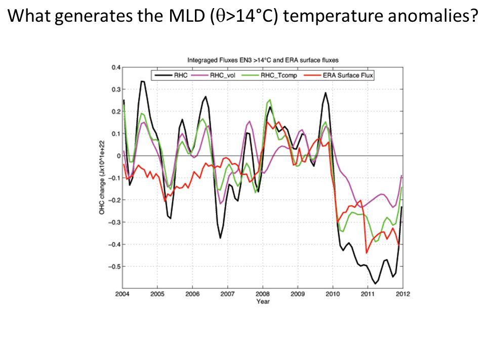 What generates the MLD (  >14°C) temperature anomalies