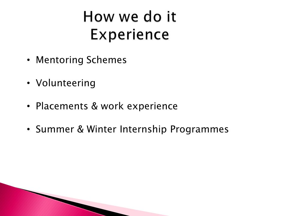 How we do it Experience Mentoring Schemes Volunteering Placements & work experience Summer & Winter Internship Programmes