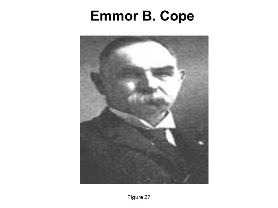Emmor B. Cope Figure 27