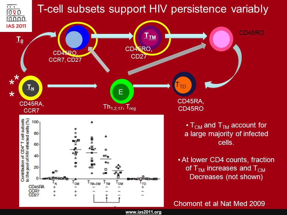 www.ias2011.org T TM T EM TNTN T TD E T CM Th 1,2,17, T reg T-cell subsets support HIV persistence variably CD45RA, CCR7 CD45RO, CCR7, CD27 CD45RO, CD27 CD45RO CD45RA, CD45RO T CM and T TM account for a large majority of infected cells.