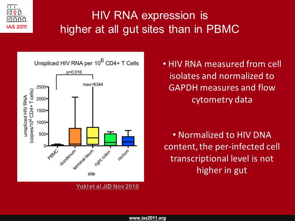 www.ias2011.org HIV RNA expression is higher at all gut sites than in PBMC HIV RNA measured from cell isolates and normalized to GAPDH measures and flow cytometry data Normalized to HIV DNA content, the per-infected cell transcriptional level is not higher in gut Yukl et al JID Nov 2010