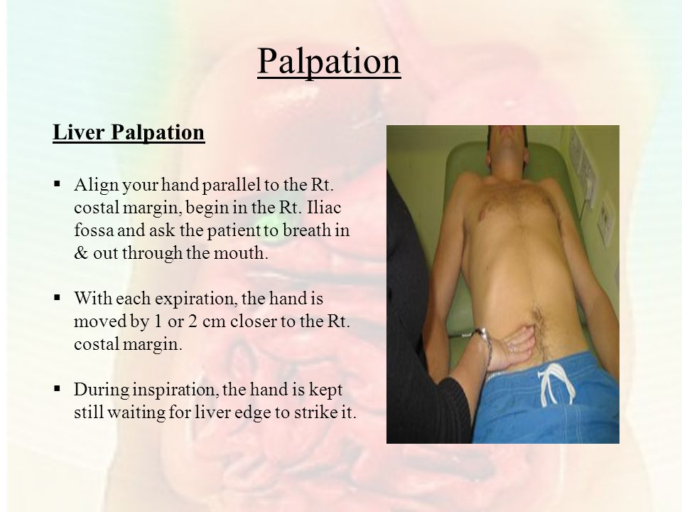 Palpation Liver Palpation  Align your hand parallel to the Rt.